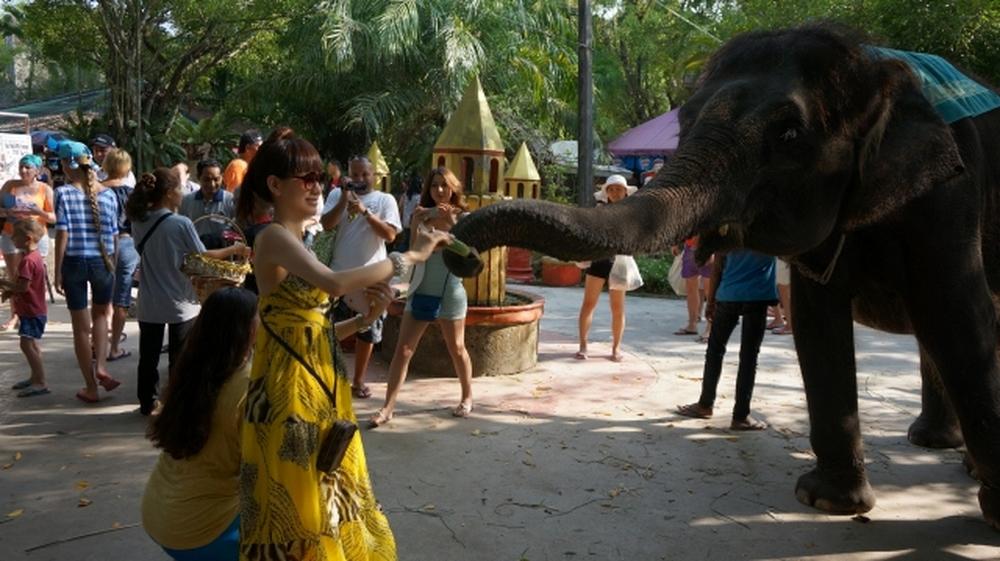 SeCetravel-phuket wedding-day 6