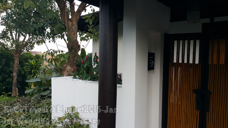 SeCeTravel-20150112-Phuket-239