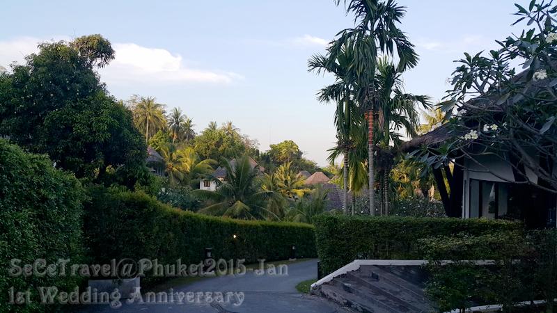 SeCeTravel-20150112-Phuket-252