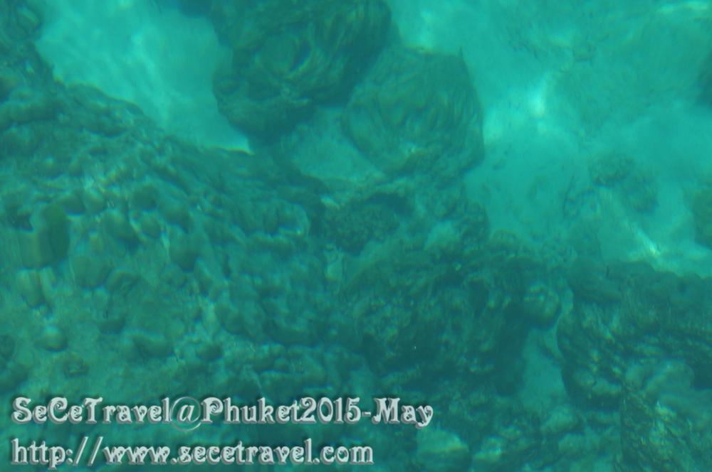 SeCeTravel-20150509-Puket-72
