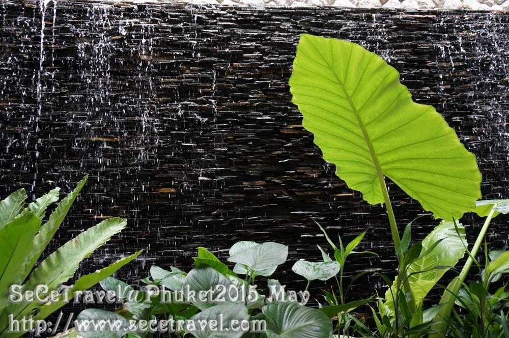 SeCeTravel-Phuket-20150511-108