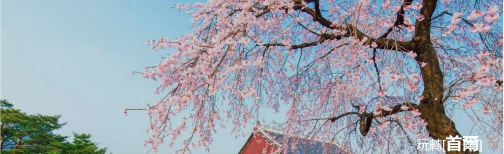 SeCeTravel-遊記分享-首爾