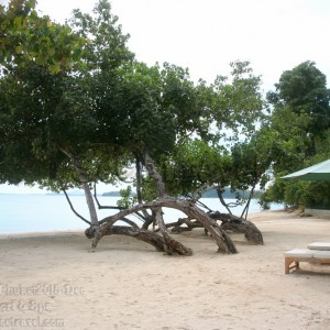 SeCeTravel-Phuket-Chandara-Beach-10