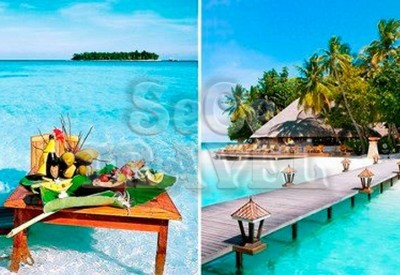 SeCeTravel-$8,899 -- 馬爾代夫 Angsana Resort & Spa Maldives 3 晚套票 豪歎 Pool Villa + Spa-5