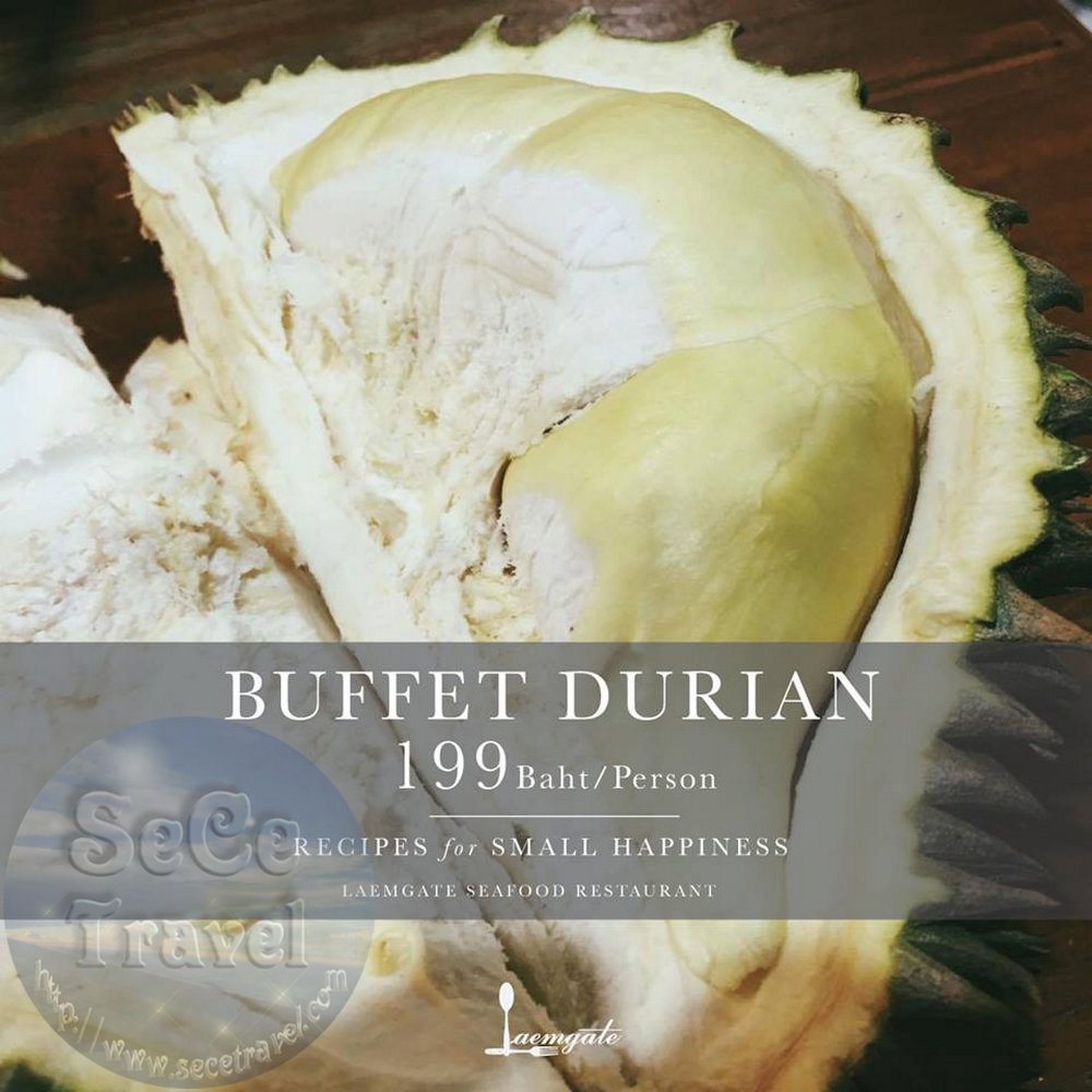SeCeTravel-BUFFET DURIAN 199 BAHT-PERSON-2