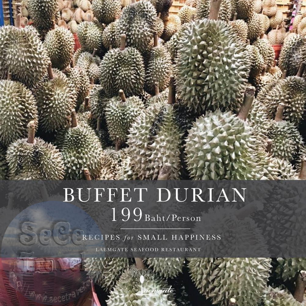 SeCeTravel-BUFFET DURIAN 199 BAHT-PERSON-3