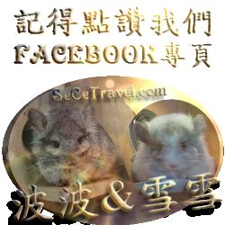 波波雪雪l-facebook專頁 logo-250250